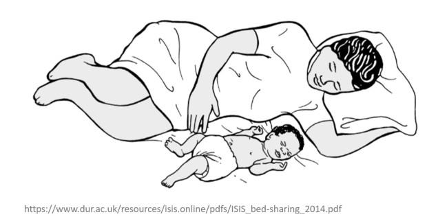 Bedsharing Cuddle curl.jpg